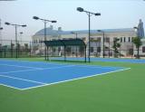 sơn sân tennis thanh khê