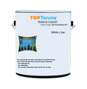 white line paint